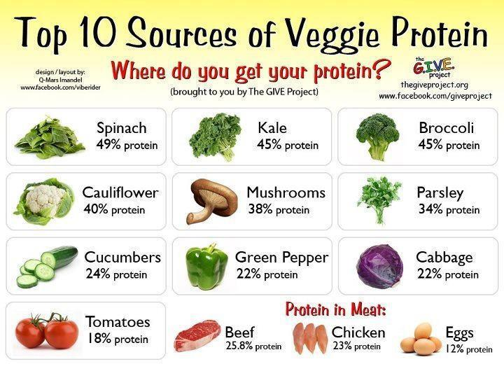 Vegetarian Foods High Protein Low Carbs