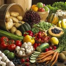 Which Vegetables Contain Calcium Getting calcium in a vegan diet healthy cancer chick well its fairly simple they eat lots of natural vegetables seeds and nuts that contain calcium workwithnaturefo