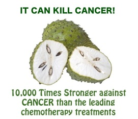 http://healthycancerchick.files.wordpress.com/2013/01/cancerkiller.jpg