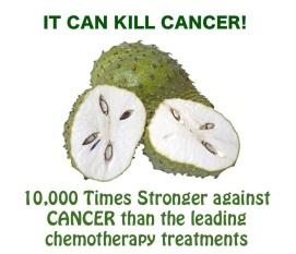 http://healthycancerchick.files.wordpress.com/2013/01/cancerkiller.jpg