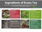 Ingredients-of-Essiac-Tea-
